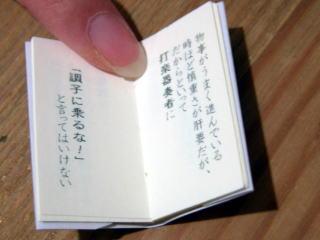 0081.jpg